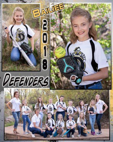 2018 defenders