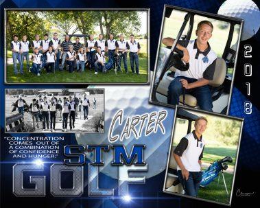stm golf