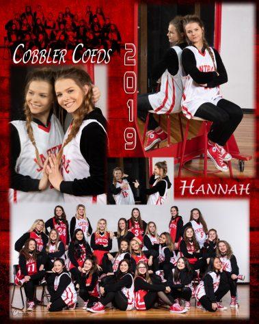 cobbler coeds