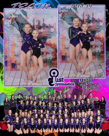 just jymnastics 2018-19