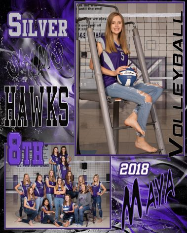 swms hawks volleyball