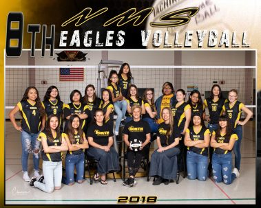 eagles volleyball